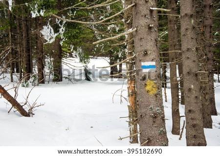 Hiking tourist  trail sign  on the tree,walking the mountain path. - stock photo