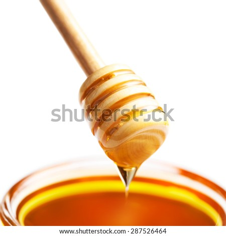 Honey Dipper with honey in jar isolated on white background macro  - stock photo
