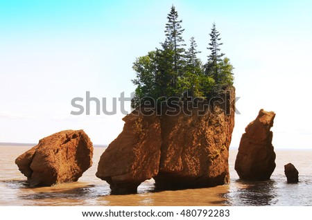 Hopewell Rocks in the Bay of Fundy, New Brunswick, Canada in the muddy water at high tide
