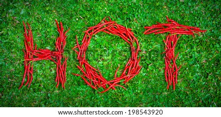 """""""Hot"""" word shaped group of red chili peppers on the green grass - stock photo"""