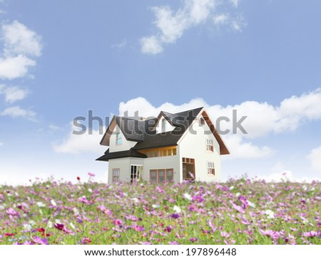 house with landscaping on the front and blue sky on background  - stock photo