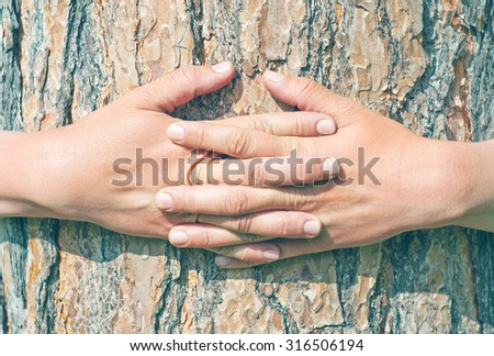 hugging a tree in the forest - stock photo