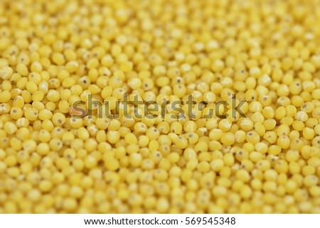 how to cook hulled millet grain