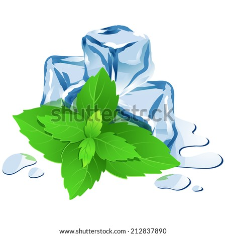 Illustration Icon of Ice cubes with mint isolated on white - stock photo