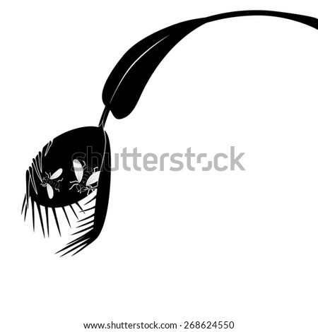 illustration of Venus flytrap in black and white colors with fly - stock photo