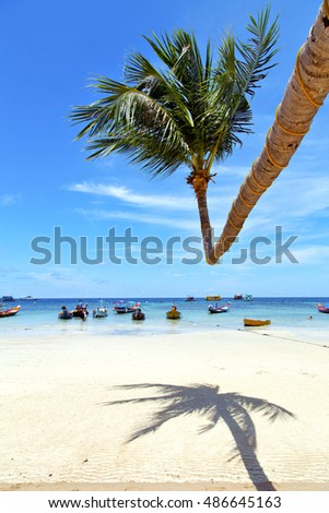 in  kho tao thailand bay asia isle   beach    rocks pirogue palm and south china sea