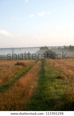 in the meadows - stock photo