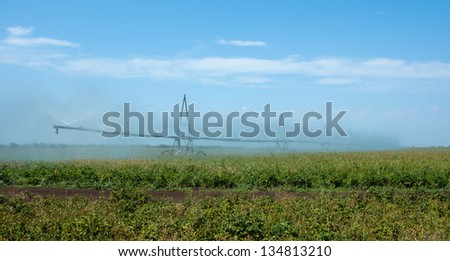 irrigation system watering  field - stock photo