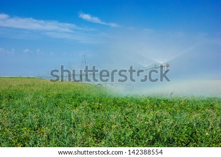 irrigation system watering  field