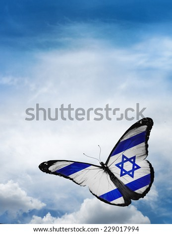 Israel flag butterfly flying on sky background - stock photo