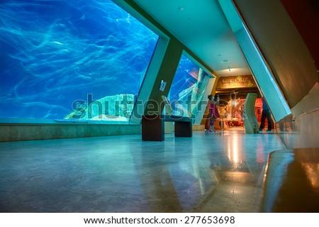 ISTANBUL, TURKEY JULY 10, 2014:  The interior of Istanbul Sea Life Aquarium TurkuaZoo. The entrance to the hall of Liberty Ship wreck.  - stock photo