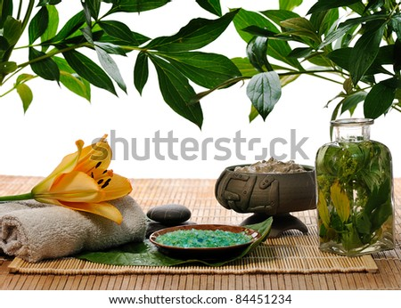 items for  spa with lily and green foliage - stock photo