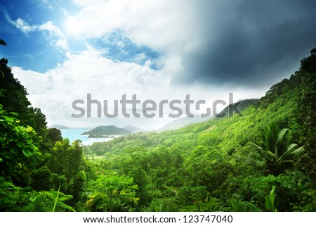 jungle of seychelles island - stock photo