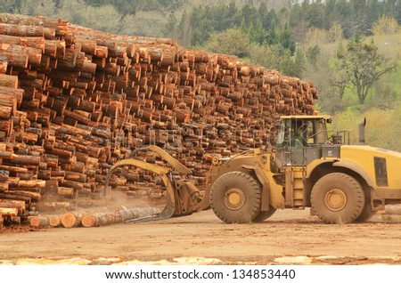 large wheeled front end log loader working the log yard at a lumber processing mill that specializes in small logs - stock photo