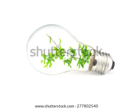 light bulb with tree - stock photo