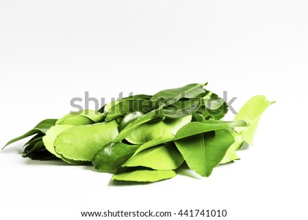 Lime Leaf White Eat Thai Green Cut Asia Cook Tasty Herd Raw Food Fruit Plant Care Mix Curry Copy Wall Ivy Drop Stem Twig Vine Art Water Botany Space Flora Grow Fresh Kaffir Mixing Wedge Limey Spicy - stock photo