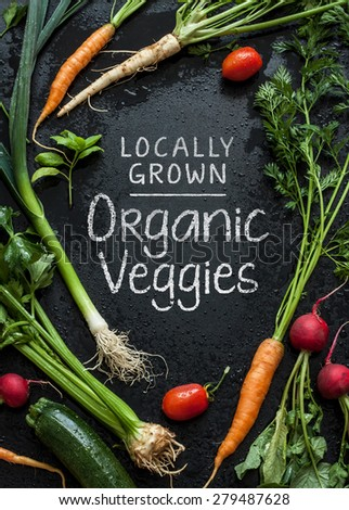 'Locally Grown Organic Veggies' poster design. Young spring vegetables on black chalkboard from above. Carrots, tomatoes, zucchini, leek, radish, celeriac, parsley and basil - harvest from the garden. - stock photo