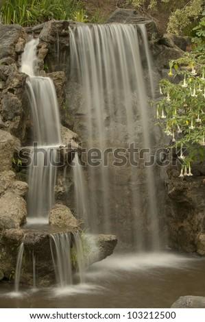 """""""Los Angeles Arboretum"""" In Spring - stock photo"""