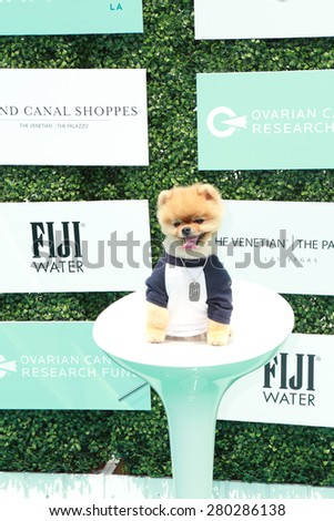 0LOS ANGELES - MAY 16:  Jiff at the Super Saturday LA at the Barker Hanger on May 16, 2015 in Santa Monica, CA - stock photo