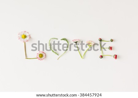 """""""Love"""" made of flowers and leaves on white background. - stock photo"""