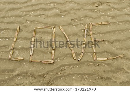 'love' written with shells, Love the sea,  - stock photo