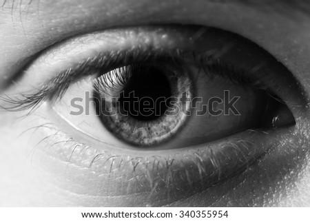 man eye close up - stock photo