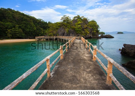 Mangrove Forest Boardwalk - stock photo