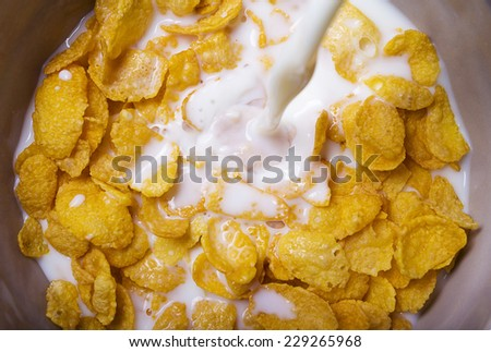 milk pouring into a bowl of  delicious corn flake cereals - stock photo