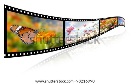 35mm 3d show images of flowers, butterfly video formats. - stock photo
