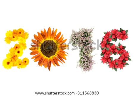 2016 New Year date formed from marigold flowers, sunflower, heather and poinsettia representing four season of the year - stock photo