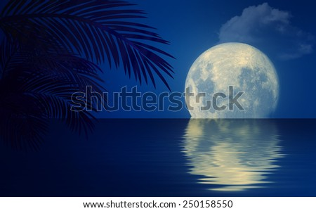 Night seascape with palm-trees.. - stock photo