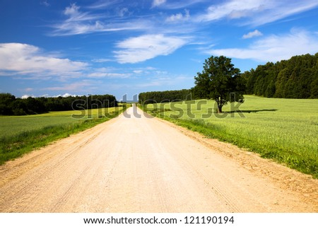 not asphalted road passing through agricultural fields - stock photo