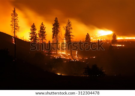 2015 Okanogan Complex Fire:  Trees, brush, and property burn throughout the night during the largest, most destructive wild fire in Washington State history - stock photo