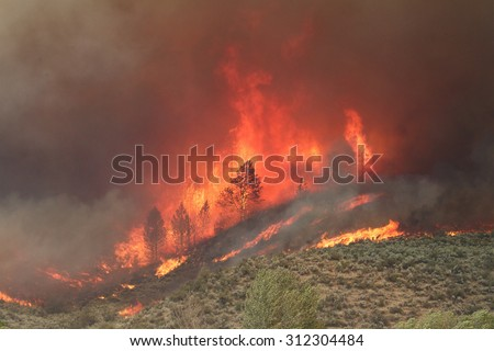 2015 Okanogan Complex Wild Fire:  Trees and brush burst into flame and smoke during Washington state's largest, most destructive wild fire  - stock photo