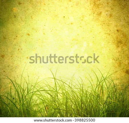 Old background  and green grass  - stock photo