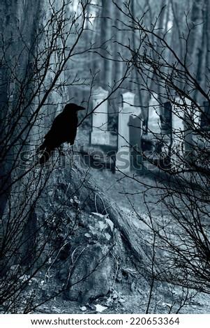 old gravestones and black raven - stock photo