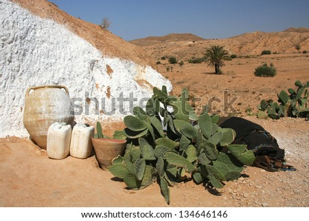 Old house and cactus in Tunisia