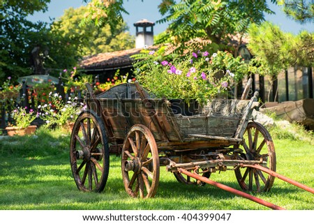 Old rustic wooden rural carriage with summer flowers in it