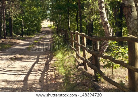 old wooden fence in the forest by the path - stock photo