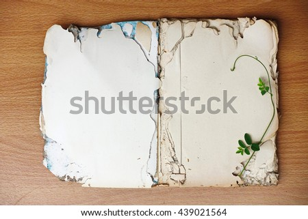 Open old book blank on old wood background still right                        - stock photo
