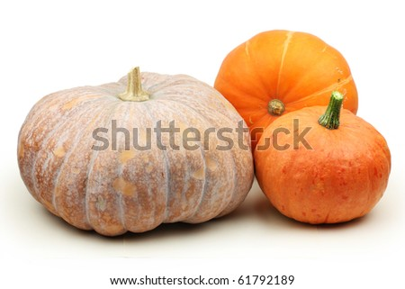 Orange pumpkin on white background - stock photo