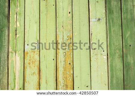 painted green background. - stock photo