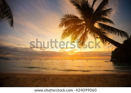 Palm tree leaves over sunset beach - stock photo
