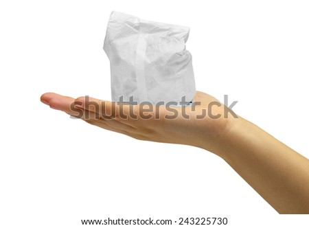 Paper bags on the white background - stock photo