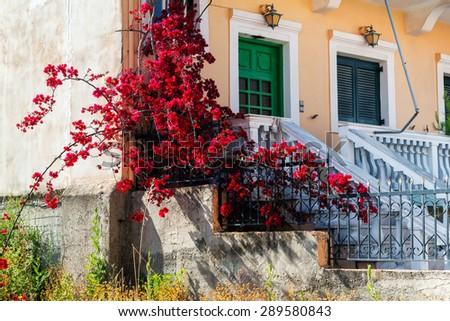part of house in Corfu with a wooden green windows and bougainvillea.
