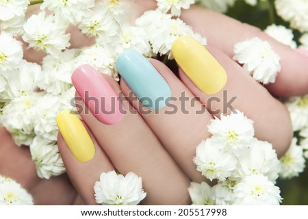 Pastel manicure on female hand with flower Hipsofilas. - stock photo