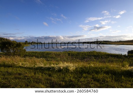 Photo of Lake in the territory of the Republic of Belarus. Summer. Blue sky. - stock photo