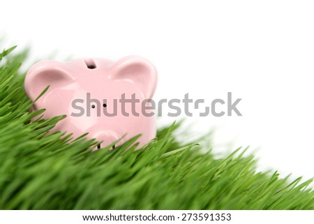 Piggy bank in grass on white