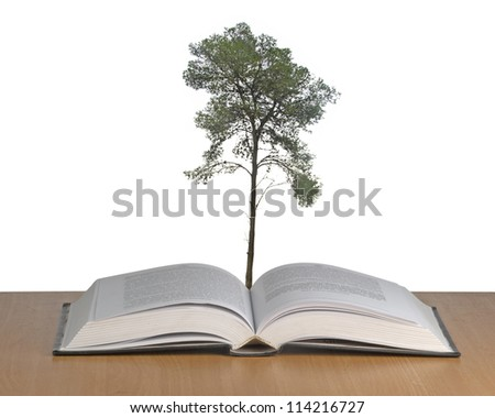 pine tree growing from open book