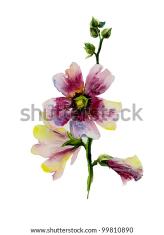 pink mallow brunch watercolor - stock photo